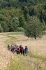 Spacer na Wołtuszową