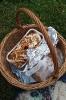 Piknik klasy 5a